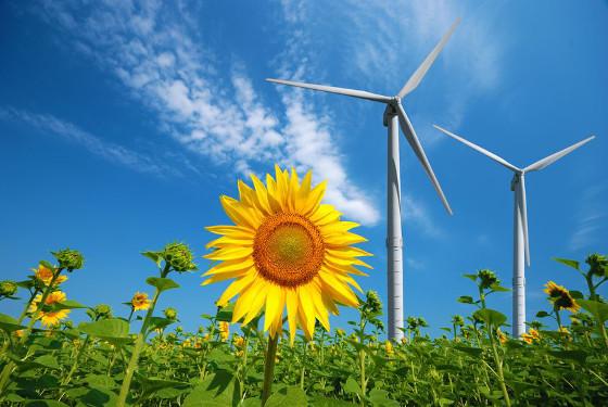 Klimaschutz im Haushalt