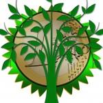 environmental-protection-886679_1280